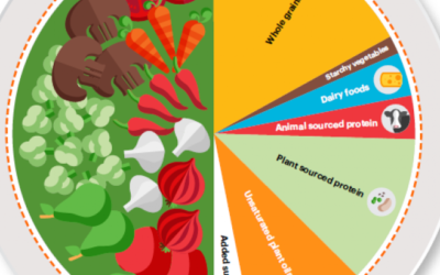 EAT- Lancet Commission Introduces New Food Guide Based on Health and Sustainability.