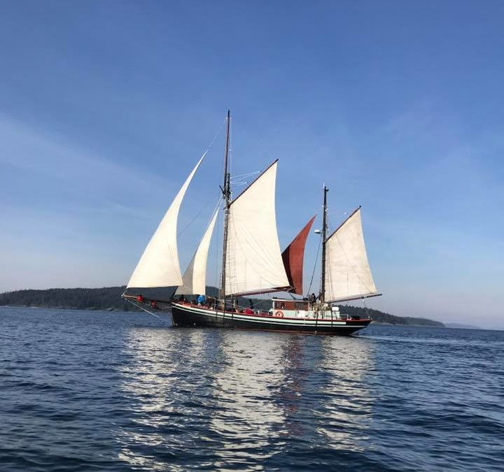 S/Y Providence: West Coast's First Sustainable Sail Cargo and Pleasure Cruising Yacht
